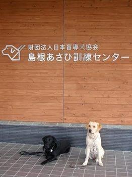 島根あさひ.jpg